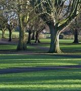 Future of public parks