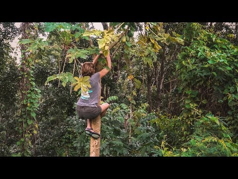 Mom Gone WILD in the Jungle || Sailing Moorea, French Polynesia