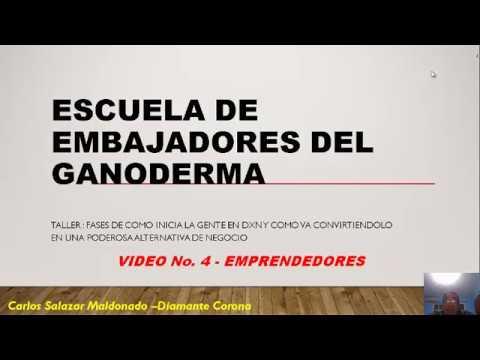 TALLER COMO GUIAR AL ÉXITO A TUS CONSUMIDORES --4 DE 5