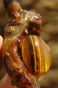 Rune-Wood Amulet:Tiger's Eye