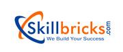 Oracle Fusion Finance Online training at SkillBricks