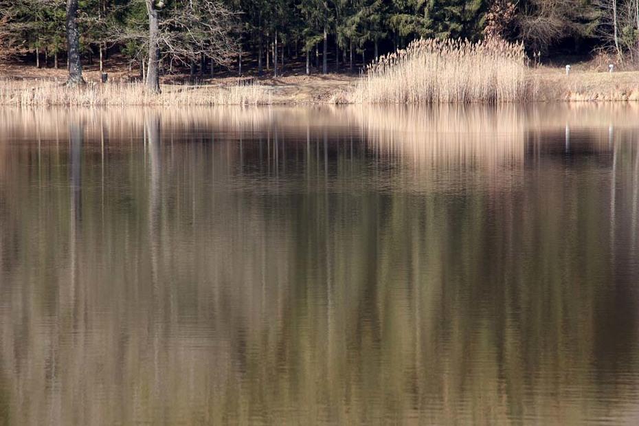 Hársas tó (7)
