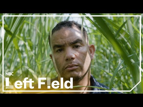 What Happened to All the Black Farmers? | NBC Left Field