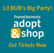 """""""CELBRICAT"""" LIL BUB MAKES SPECIAL VIP MEET & GREET APPEARANCE  AT ADOPT & SHOP"""