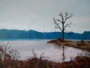 Dyke Marsh Blue Trees 2019