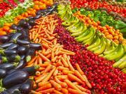 Vegetarian Food Festival