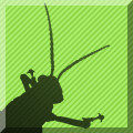 Intermediate Grasshopper Online