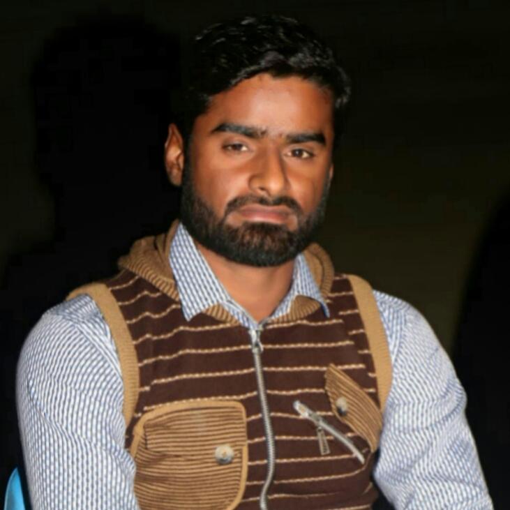 M Qaswar Mehdi