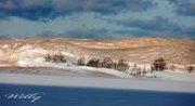 Silver Lake dunes winter