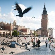 14th International Conference on Mercury as a Global Pollutant, Krakow, 8-13 Sept 2019