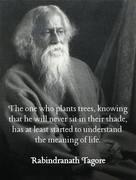 He Who Plants Trees