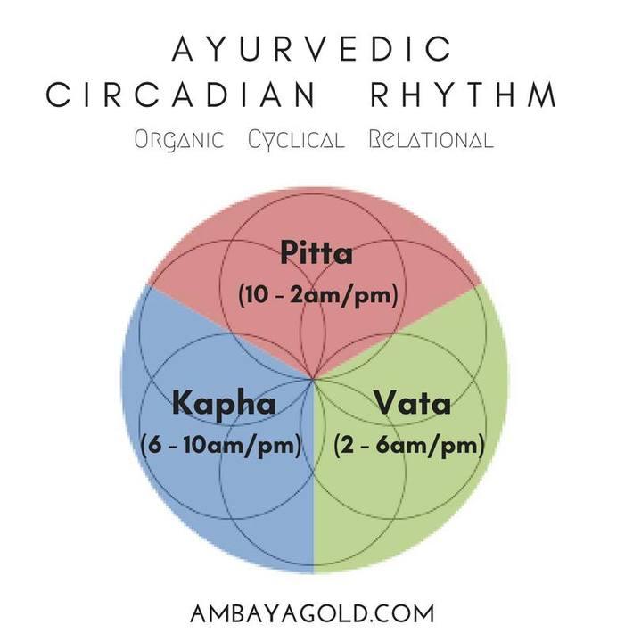 Ayurvedic Circadian Rhythm Chart