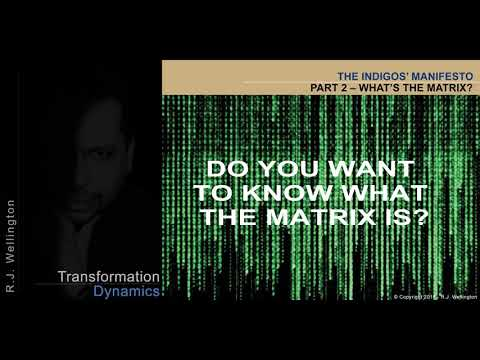The Indigo's Manifesto PART 2 – What is The Matrix?