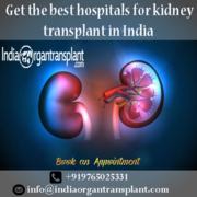 India Has Become a Medical Tourism Destination for Low-Cost Kidney Transplant