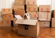 Are you looking for a safe Commercial Movers Company?