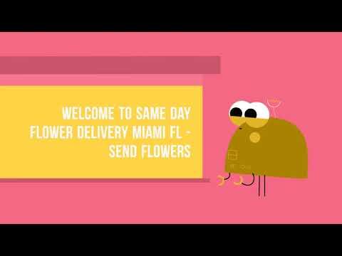 Same Day Send Flowers To Miami FL | 786-422-5849