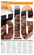 CAN BIG BROTHER TECHNOLOGY CLEAN UP PALM OIL'S IMAGE?