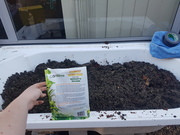 In goes the coir, compost, some live worms and worm eggs