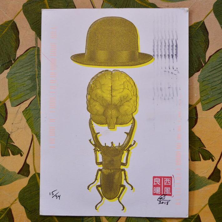 BeetleBrainBowler
