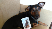 ZOPI  with card from Pam McVay small file