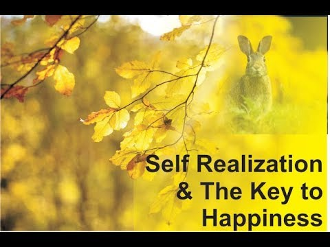 When You Dissolve, There is Eternal Joy | Self Realization & The Key to Happiness