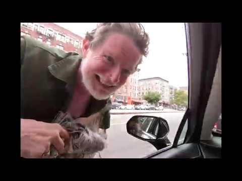 POV Stoner drives in New York hilarious Hobo in Harlem