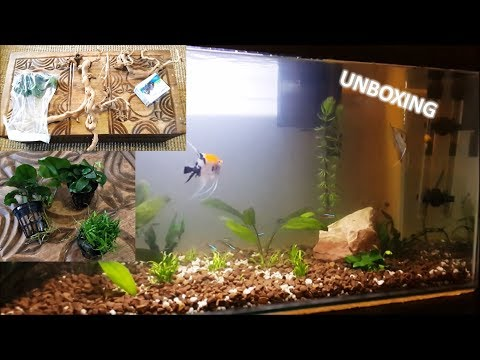 UNBOXING Aquarium plants, wavemaker and driftwood for 100L Tank!