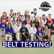 Belt Testing Brown Stripe and Below