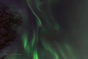 Torsdagen den 28 febs norrsken