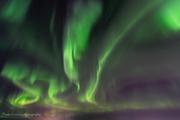 Norrsken_w-CPC7623