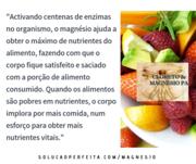 Nutrientes e magnésio