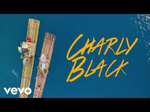 Charly Black - Love Every Woman (Official Music Video)