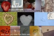 hearts everywhere
