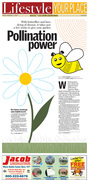 Pollination Power
