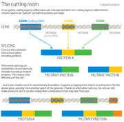 Genome cutting room