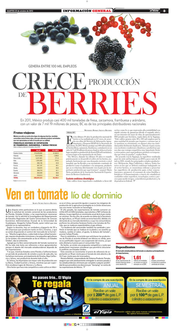 Crece la producción de berries