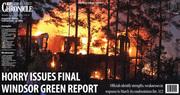 Windsor Green report1