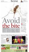 Avoid the bite