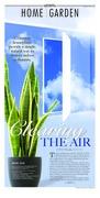 11.14.15 H+G plants that clear air