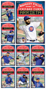 Chicago Cubs 2015 collage