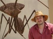 insecten in ijzerdraad