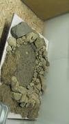 Очаг каменного века