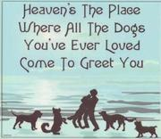 Heavens the place - Dogs
