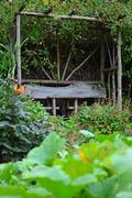 Woodbrooke Garden