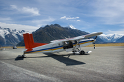 Mt Cook skiplane