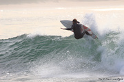 Ripping up Seal Point !!