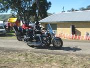 coming in dungog