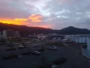 Stuck in Picton no ferry crossings