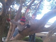 Photo uploaded on December 28, 2009