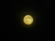 The Moon, from my window (4)